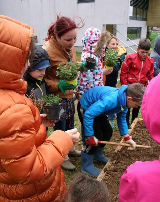 Pa ga imamo, šolski zeliščni vrt, namreč